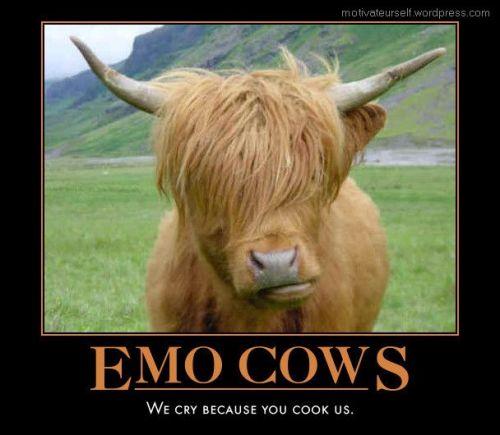 emo-cows