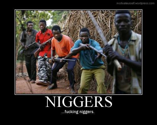 niggers7