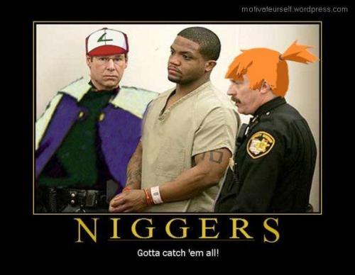 Niggers8