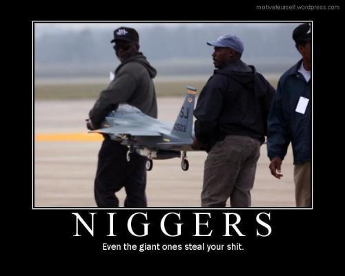 Niggers9